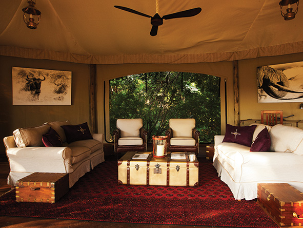 Private and luxury suite, mara plains camp