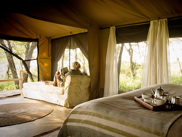 Serengeti private tent, Dunia Camp