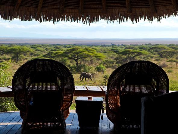 Elephant, Amboseli, Kenya