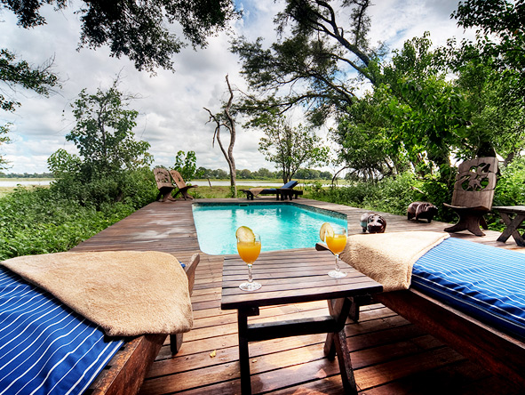 swimming pool on safari