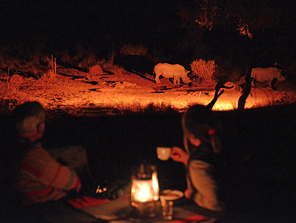 Madikwe Game reserve at night