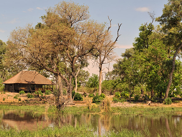 Kwai Tented Camp, Moremi Game Reserve
