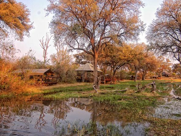 Kwai Tented Camp, Botswana Safari