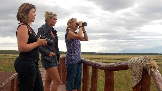 Top Tips on Booking Your African Safari - experts