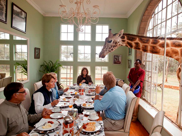 The Giraffe Manor, breakfast