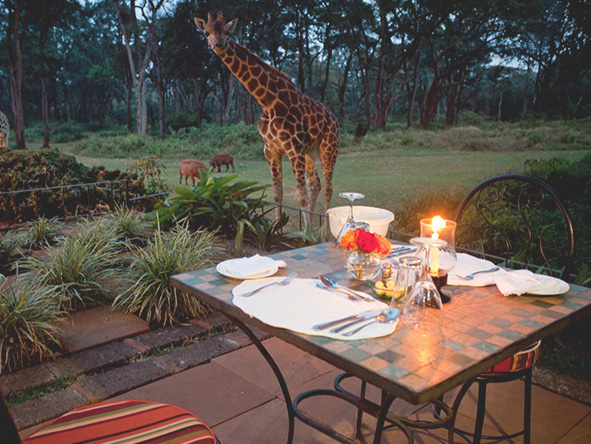 The Giraffe Manor, outdoor dining