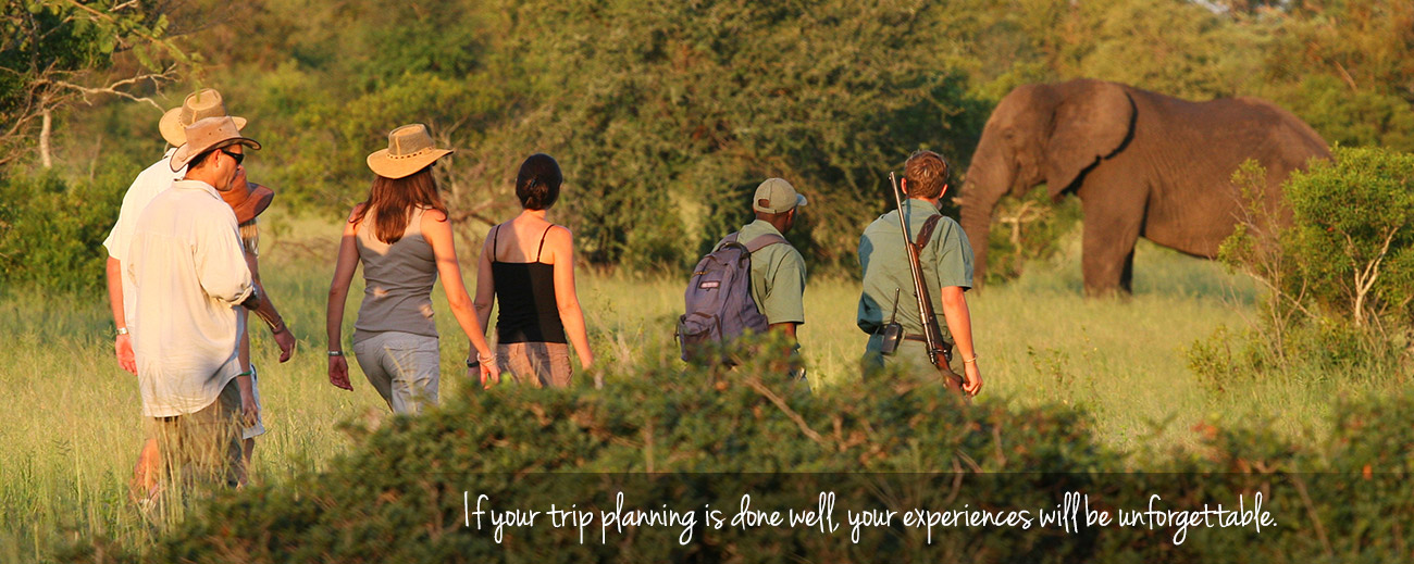 Top Tips on Booking Your African Safari
