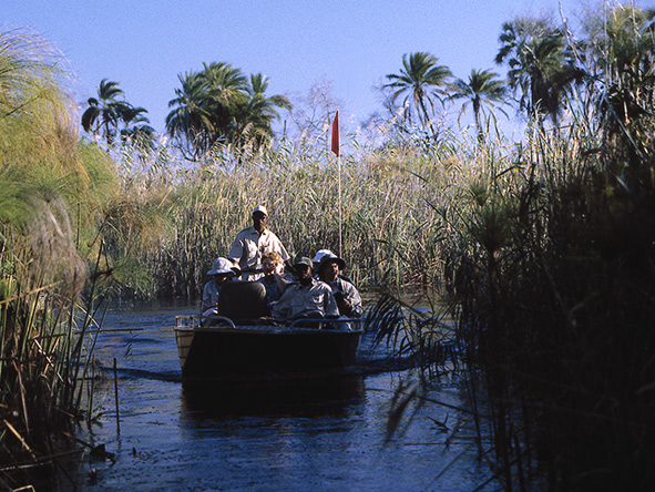 Okavango Delta tour by boat