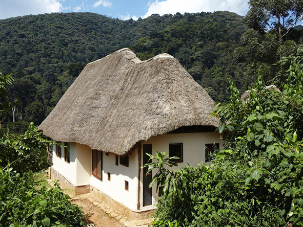 Volcanoes Bwindi Lodge, thatched chalets