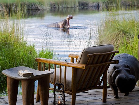Hippo, Xakanaxa Camp