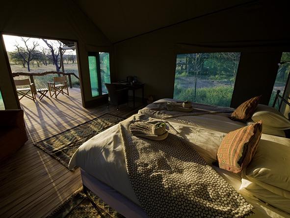 Ongava Camp, Etosha National Park