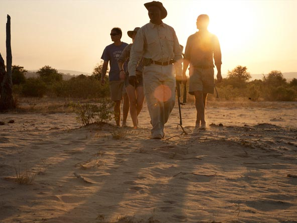 A guided walking safari through East Africa's top reserves is a fantastic way of getting to know the landscape.
