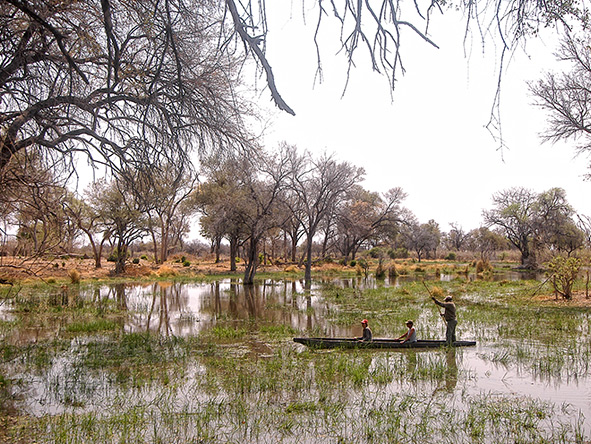Discover the Okavango Delta waterways in a mokoro, a traditional dug-out canoe typical of the region.