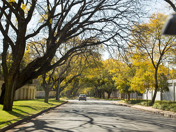 Houghton is one of the city's wealthiest suburbs, and is home to Nelson Mandela's house.