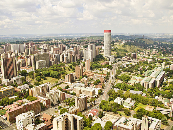 Joburg has the largest man-made forest in the world.