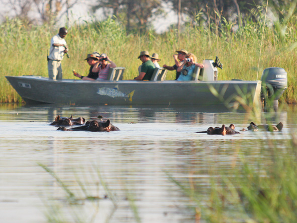 Okavango Delta, water safari