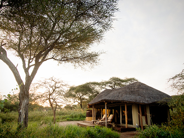 Accommodation on Safari