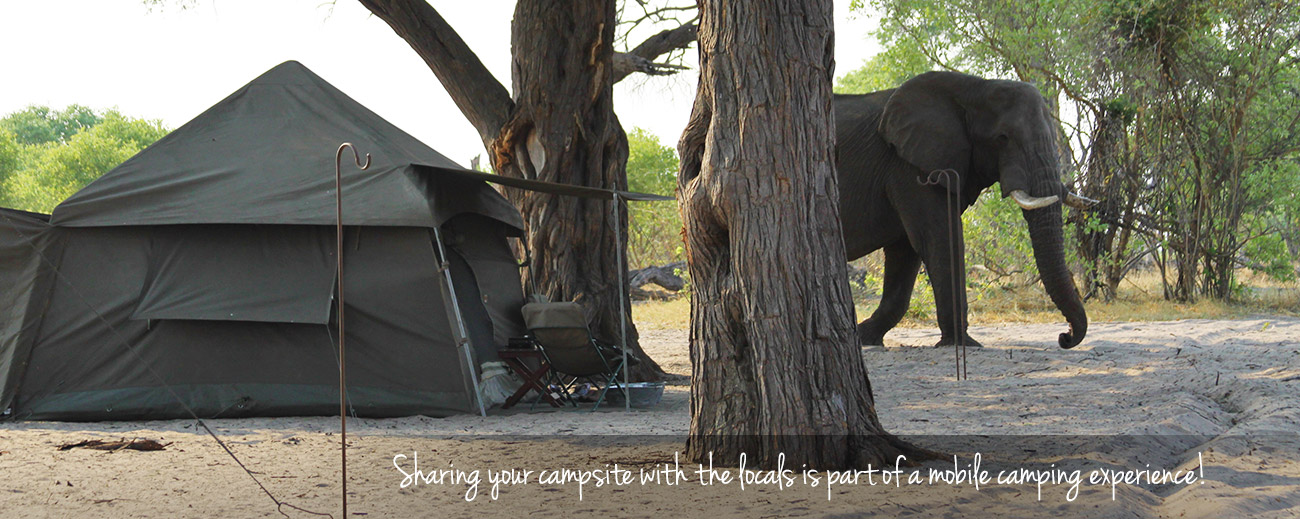 Practical Tips for Mobile Camping