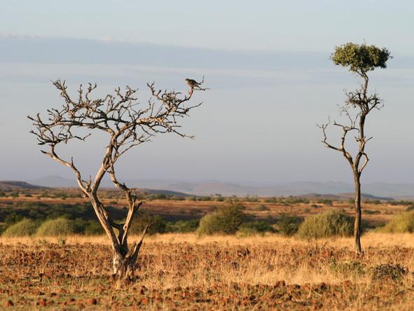 Damaraland landscape, Namibia