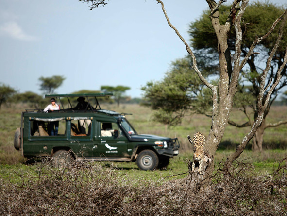 Private safari vehicle