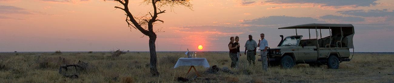 Onguma Safari