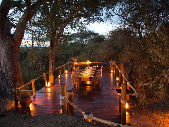 Olivers Camp, treetop dining