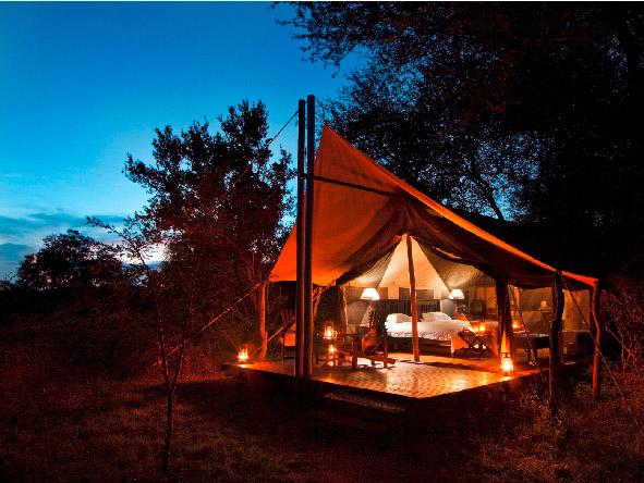 Plains Camp, luxury safari tents