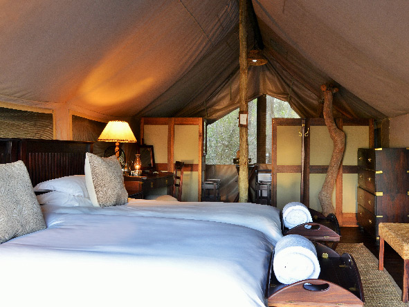 Luxury tents, Plains Camp, Kruger