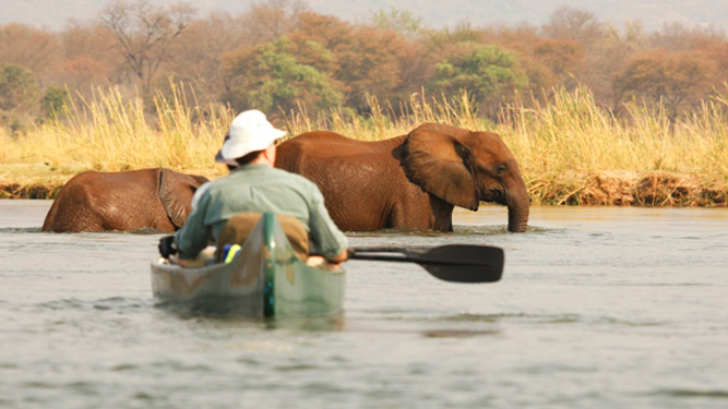 Four Alternatives to a Traditional Safari - Canoe Safari