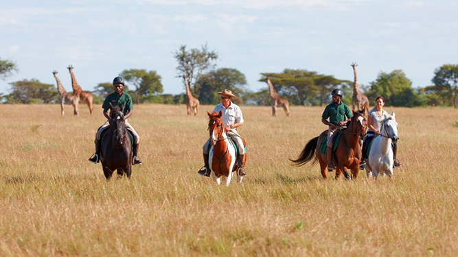Four Alternatives to a Traditional Safari - Horse-back safaris