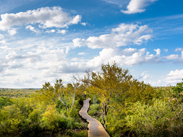 Kruger National Park, walking paths