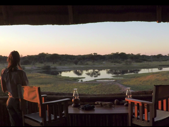 views of the waterhole, The Hide