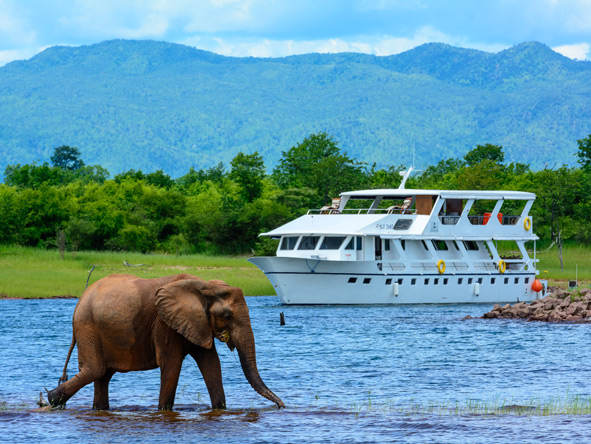 Lake Kariba, elephant