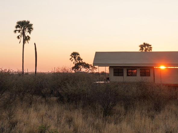 Makgadikadi, Camp Kalahari, sunset