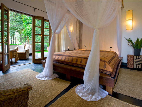 Standard room, private patio, plantation lodge