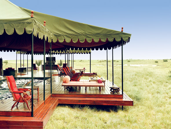 Jacks Camp, Botswana Safari