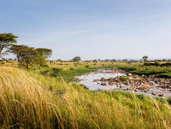The Mara River, Tanzania