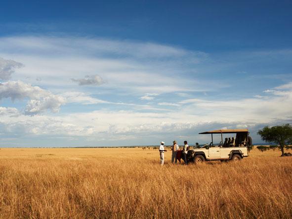 Safari in Singita Grumeti Reserves