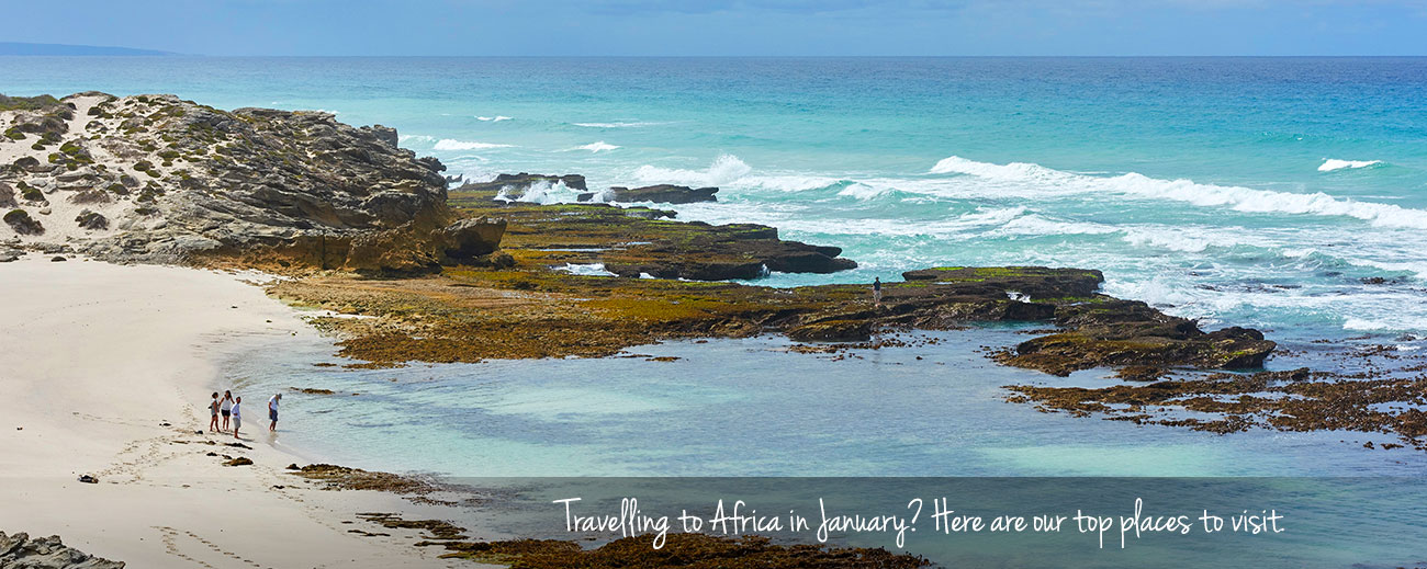Where to Go in Africa in January