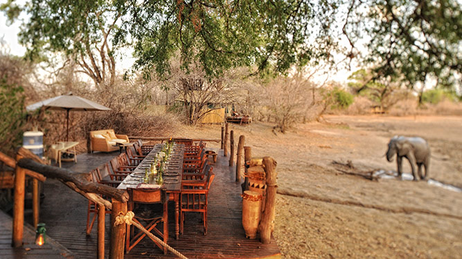 Zimbabwe Rises Again - Kanga Bush Camp