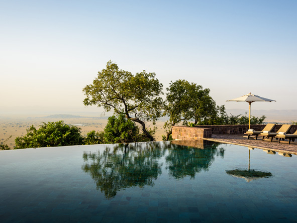 Tranquil pool views, Serengeti