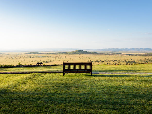 Outdoor serengeti views from singita sasakwa