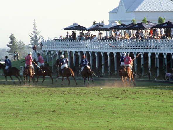 polo championships at Kurland Polo Estate