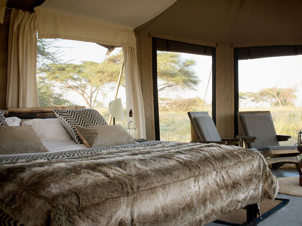 luxurious tented suite at Namiri Plains