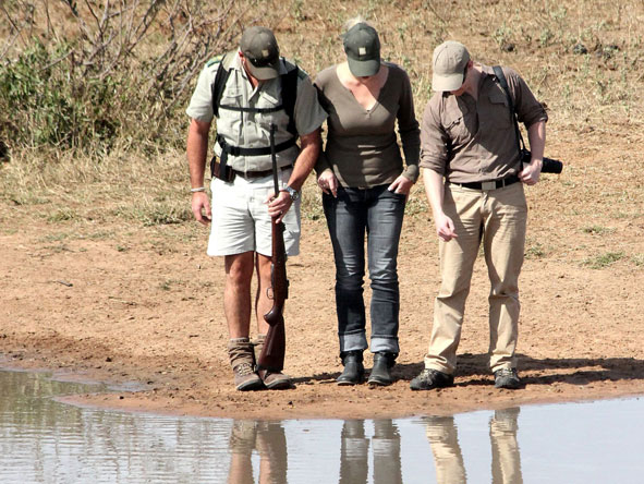 Guided walking safari, Timbavati Game reserve