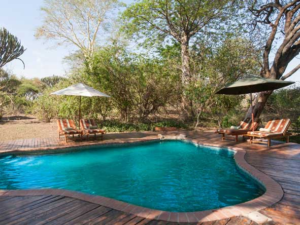 swimming pool at Mvuu Camp