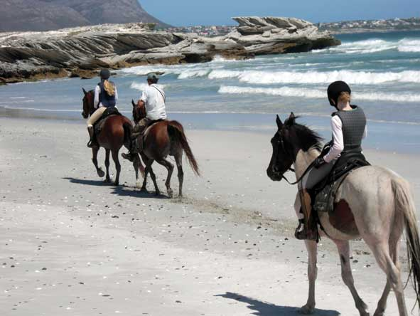 horseback safari on the beach