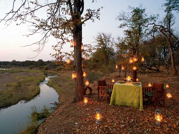 private bush dinner, singita pamushana lodge