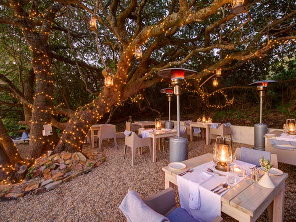 dinner under trees, Grootbos Garden Lodge