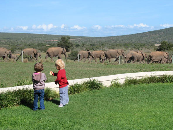 children at River Bend Lodge, Addo Elephant Park